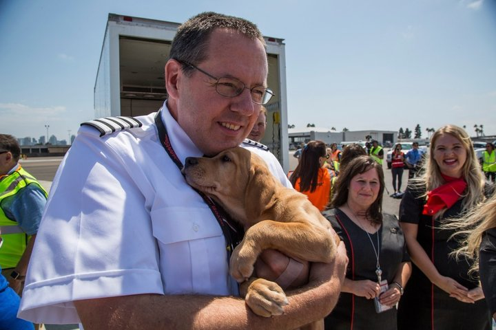 Southwest Airlines pilot holds puppy