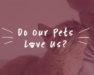 pets love us